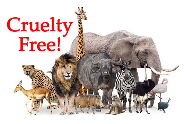 Not Tested on Animals - Cruelty Free